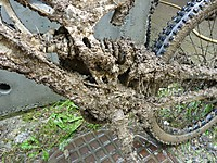 Dirty Bike Challenge Dateiname: 224523_10150245057235773_3678196_n.jpg